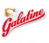 logo-galatine-medium